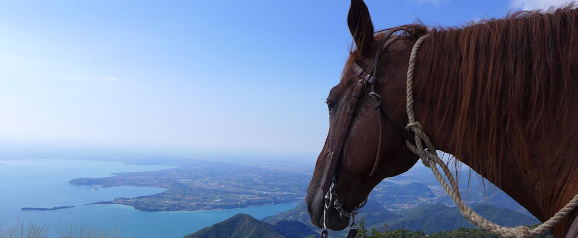 equitazione Toscolano maderno