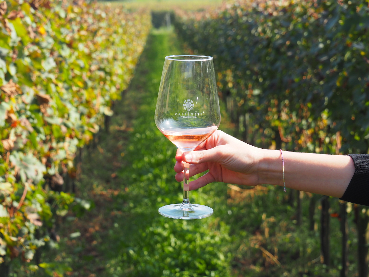 degustazione vini rosa Valtenesi