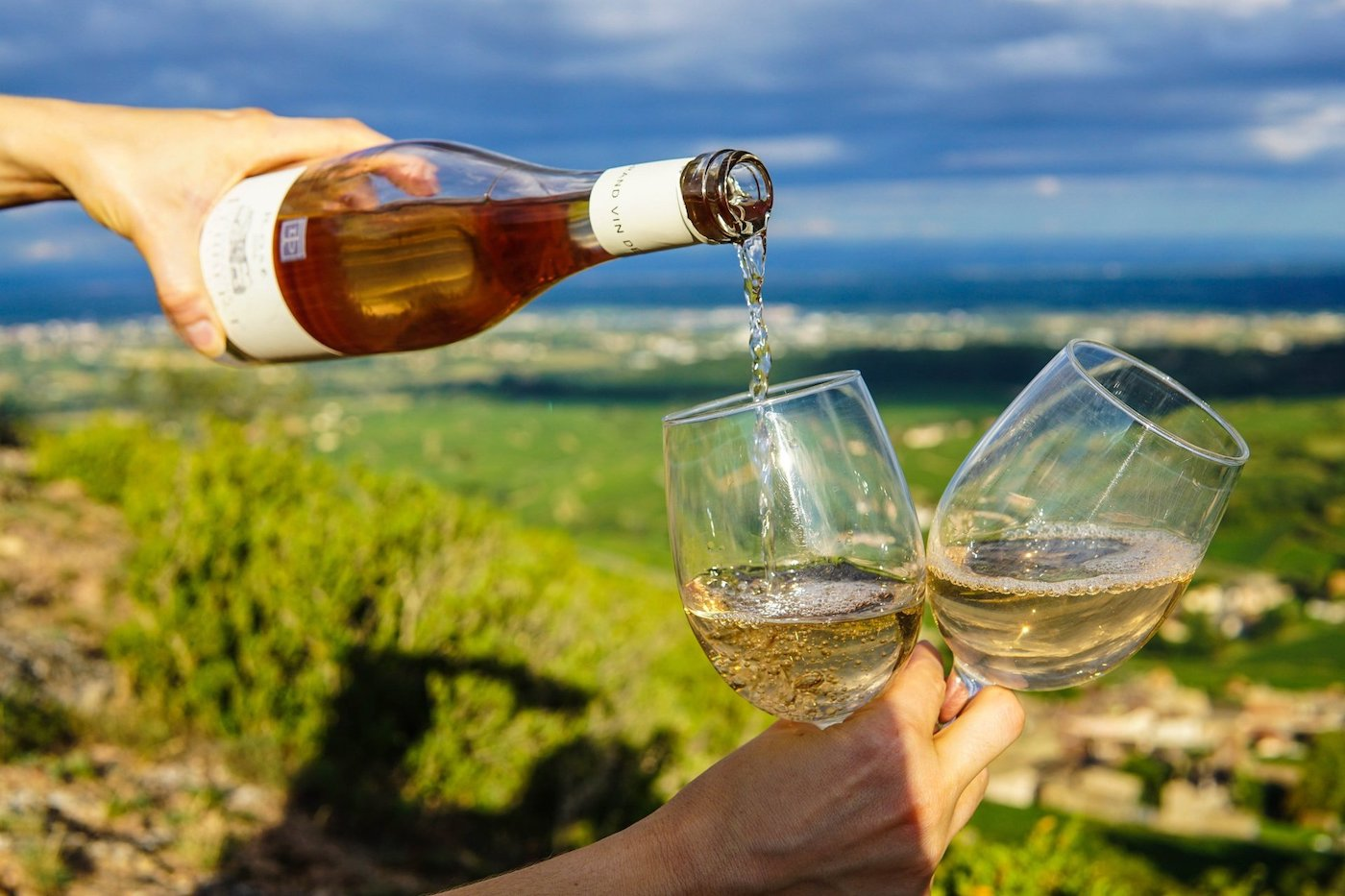 Degustazione vini calici