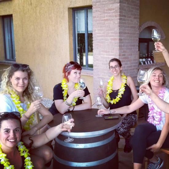 Gruppo Degustazione vini Lugana