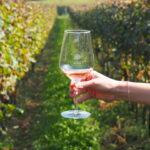 Chiaretto Valtenesi Rose wine