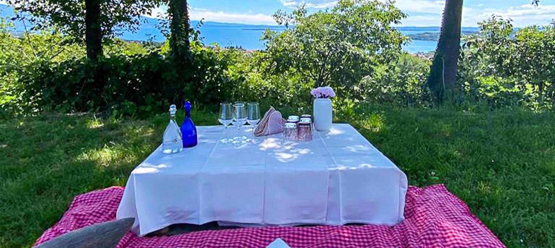 picnic in vigneto vista lago