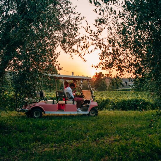 sunset tour in vigneto
