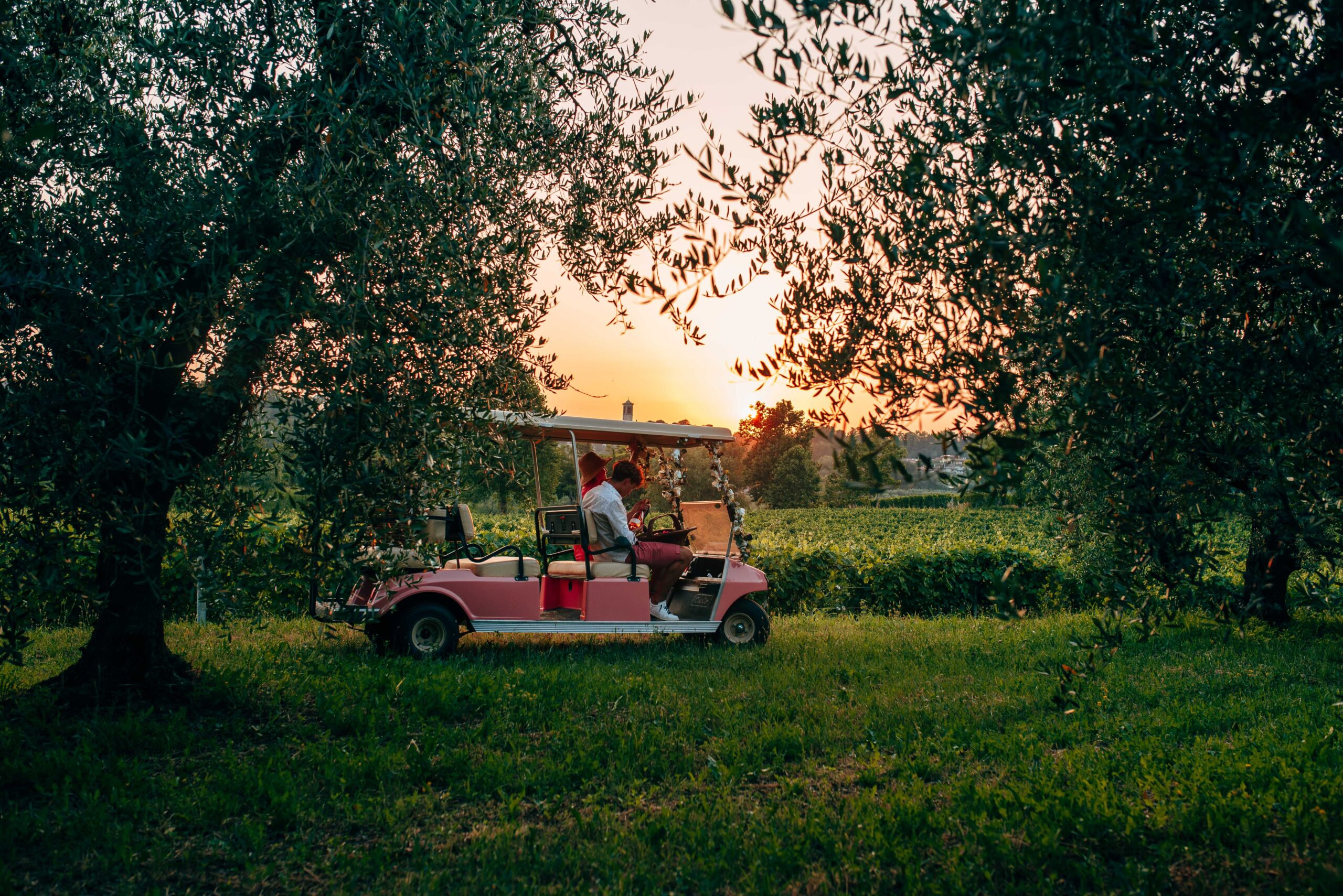 sunset tour in vigneto