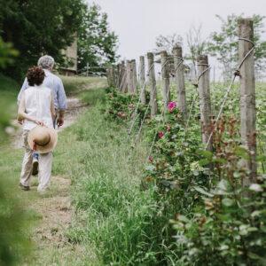tour a piedi con visita in cantina e degustazione vini