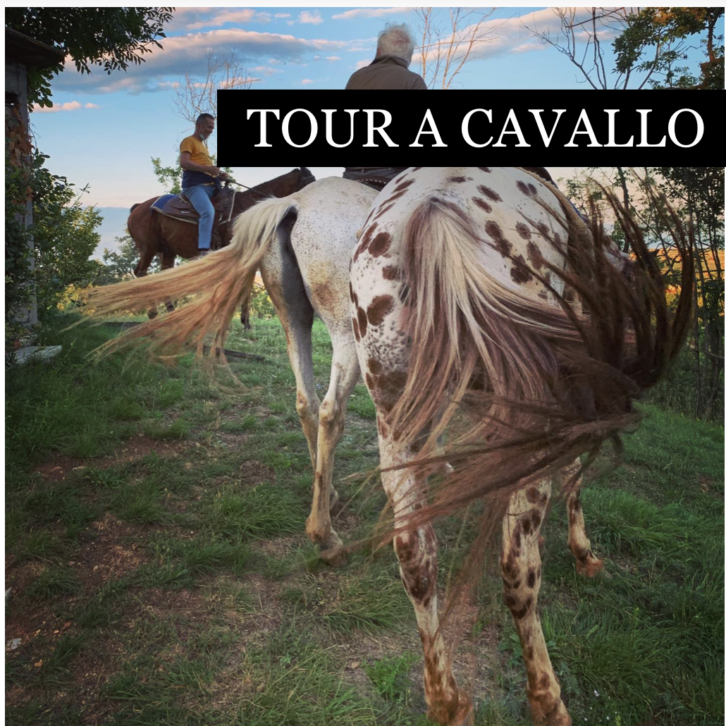 Tour a cavallo - categorie tour shop - Garda E-motion