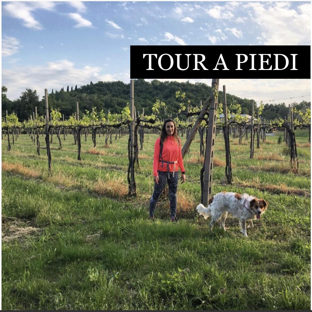 tour a piedi - categorie - tours shop - Garda E-motion